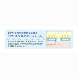 エクスボーテ エアーラスティングパウダークリスタルモイスト 11g (ケース付き)
