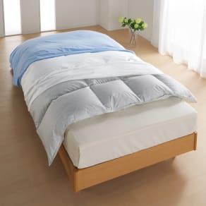 ダブル(ミクロガード(R)防ダニ用寝具プロテクター 掛け布団用) 写真