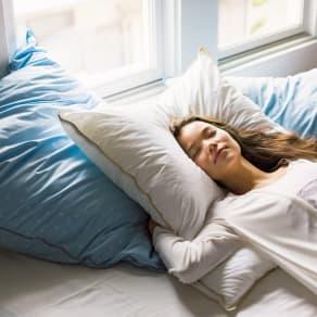 大判50×70cm(フォスフレイクス枕クラシック&ロイヤーレ 枕カバー付き) 写真