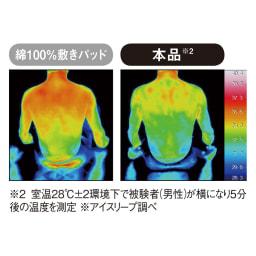 ひんやり除湿寝具 デオアイスネオシリーズ お得な掛け敷きセット 暑さ・湿気・ニオイに強力アプローチ 1 接触冷感 肌面は、高い冷感が特長の特殊なポリエチレン素材でサラサラの肌ざわり。昨年よりもひんやり感がさらにパワーアップして、いっそうクールな寝心地に。