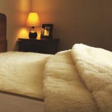 ザプレミアムソフゥール敷き毛布S