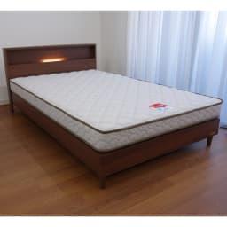 FranceBed/フランスベッド LED照明コンセントマットレス付ベッド (ア)ウォルナット