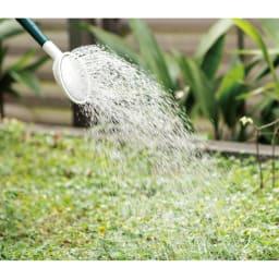 【お試し】特許取得 植物性除草剤(1本) 水で薄めてまくだけ
