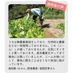ニーム肥料(2袋) ※個人の感想であり、効果を保証するものではありません。
