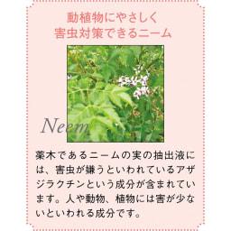 ニーム肥料(お得な3袋組)
