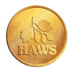 英国HAWS(ホウズ)プラスティックジョウロ 6L