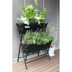 菜園プランターコンパクトベジトラグ 2段 野菜やハーブも一緒に育てられます。