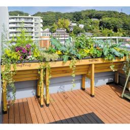 木製菜園プランター ベジトラグ コンパクトミニ [コーディネート例]※お届けは写真左のコンパクトミニサイズです。