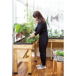 木製菜園プランター ベジトラグ S 高さがあるので、立ったままで、水やりや植え替えなどがラクにできます。(※お届けの色とは異なります。)