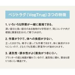 木製菜園プランター ベジトラグ S ベジトラグ(VegTrug)3つの特徴