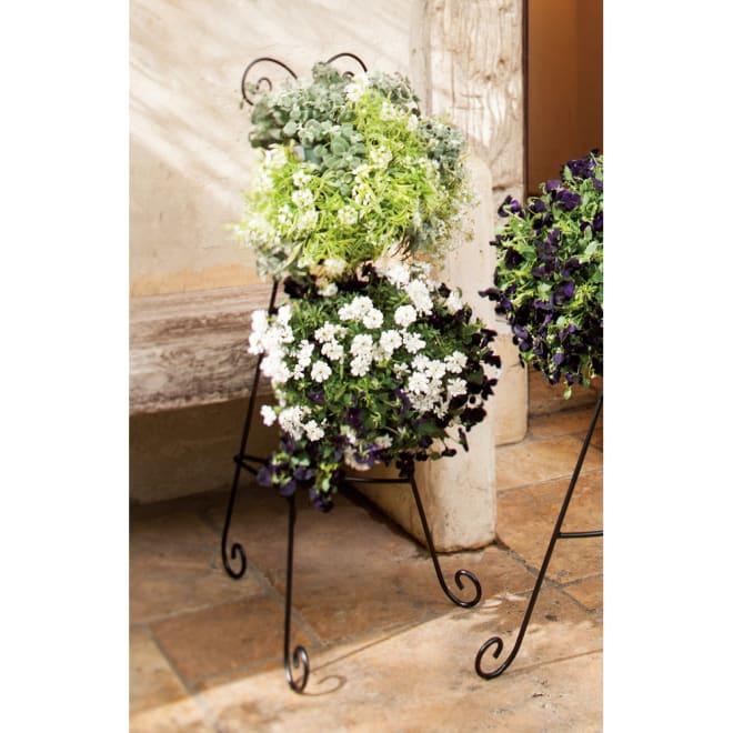 ハンギングスタンド大 バスケット2個セット 使用イメージ パンジーやビオラなど、育てやすい植物がおすすめ!