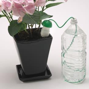 水やり当番Lサイズ6個組【給水アイテム】 写真