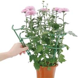 花ささえ22本組(大18・伸縮4本) 伸縮タイプは2本1組でご使用いただけます