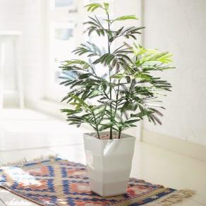 人工観葉植物エバーフレッシュ 高さ85cm 写真