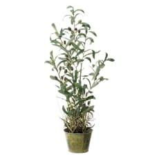 人工観葉植物オリーブ 高さ68cm 鉢カバーなし