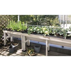 木製菜園プランター ベジトラグ S 写真