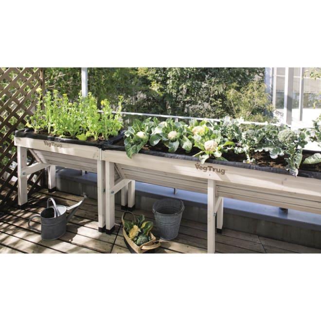 木製菜園プランター ベジトラグ L ※写真は(左)Sサイズ (右)Lサイズです。