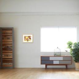 あらいぐまラスカル/暖炉 お部屋に飾ったイメージ
