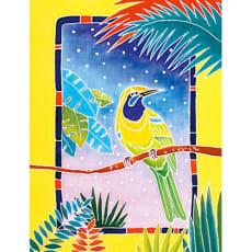 星夜鳥(ホシヨドリ)