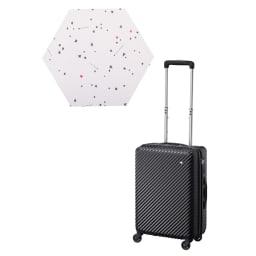 ACE HaNT(ハント)機内持込サイズ対応 スーツケース 33L 2.7kg (キ)パンジーブラック