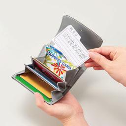 COGIT(コジット)/仕分けて便利 じゃばら式コンパクトカードケース