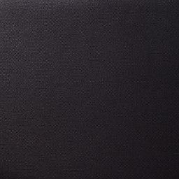 ace.GENE(エース ジーン)/Wシールドパック B4対応 ビジネスリュック (ア)ブラック/生地アップ