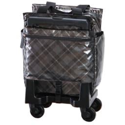 SWANY(スワニー)/軽量支えるバッグ タルタン 約12L 1.9kg M18 背面