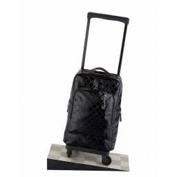 SWANY(スワニー)/4輪ストッパー付 L21 22L 2.6kg|エマイロIII 4輪ストッパー付き