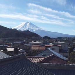 創業1866年槙田商店/傘生地を使ったポータブルバッグ(エコバッグ) ジャカード織 ドット&ボーダー柄 槙田商店から見える富士山は絶景でした。富士山のきれいな湧水で染色した織物はやはり発色がよいようです