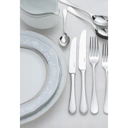 Noritake(ノリタケ)/ハンプシャープラチナ 23cmアクセントプレート(お皿)ペアセット(2枚組)|洋食器