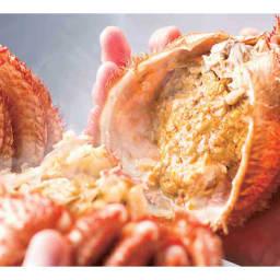 北海道えりも産 蒸し活毛がに 大(約500g)×1ハイ  カニみそをご堪能ください!