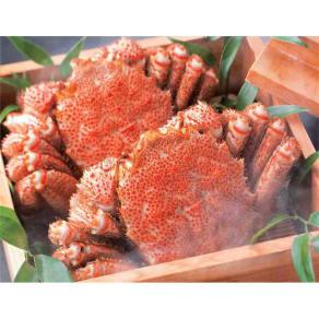 北海道えりも産 蒸し活毛がに 大サイズ (約500g×2ハイ) 写真