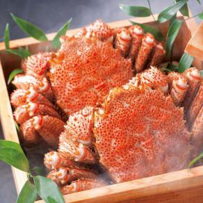 北海道えりも産 蒸し活毛がに 大(約500g)×1ハイ  写真