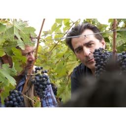 【ワイン】ヤニック・アレノ&M・シャプティエ クローズ・エルミタージュ ミッシェル・シャプティエと、ヤニック・アレノ