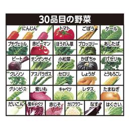 カゴメ野菜一日これ一本 長期保存用 (190g 30缶)