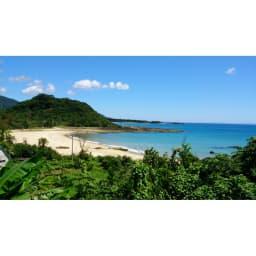 【敬老の日】奄美 長寿の酒(黒糖焼酎) 徳之島風景