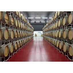 【ワイン】チャンキー・レッド・ジンファンデル (750ml) マーレ・マンニュム社の貯蔵庫。