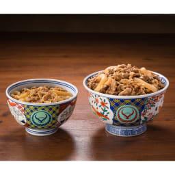 吉野家 超特盛牛丼の具 10食セット サイズ比較 (左)並盛120g (右)超特盛290g