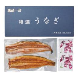 【お中元】愛知三河産 うなぎ蒲焼 2尾 (7月中旬お届け) お届けパッケージ