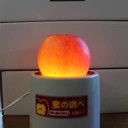 山形県朝日町産 dのりんご 2kg 蜜は透過性があり、下から光をあてると、光を通します。「dのリンゴ」は、蜜がたっぷり入っているので、全体がランプのように明るくなります。