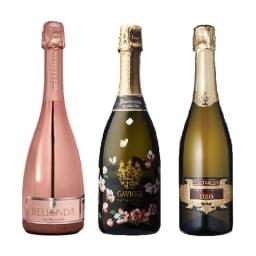 イタリアスパークリンワイン3本セット