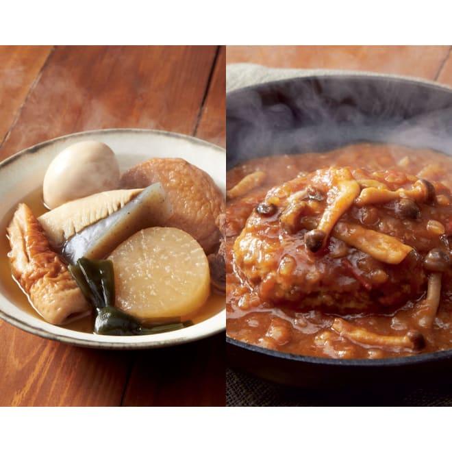 イザメシ 煮込みハンバーグ&しっかりおでん (各6食 計12袋) 【盛り付け例】