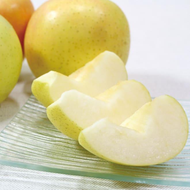 青森産 厳選りんご「トキ」 (約2.5kg) 糖度センサーを通した糖度15度以上のものだけを厳選してお届けします。