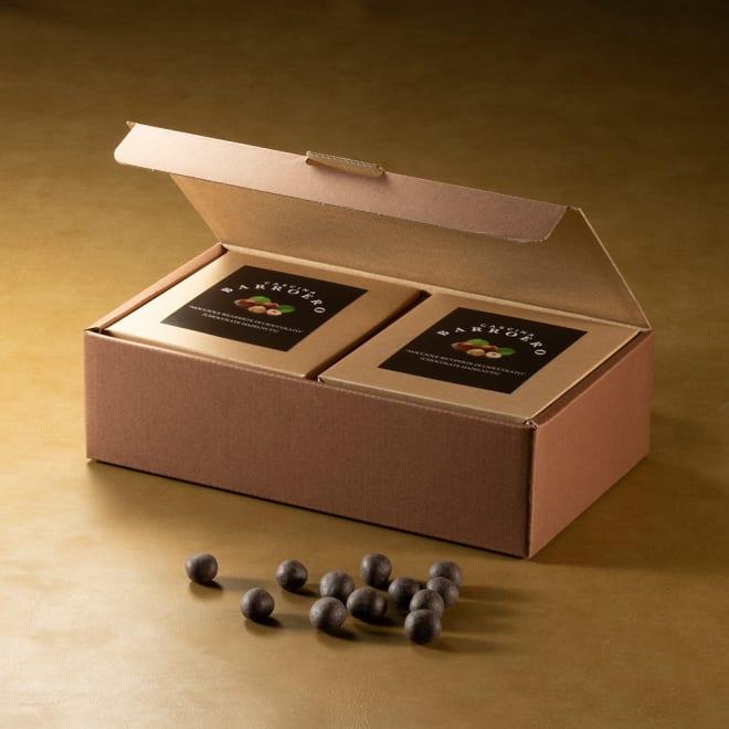 PIEMONTE ITALY ×FRANCE BARROERO ヘーゼルナッツ・チョコレート (100g×2箱)【通常お届け】