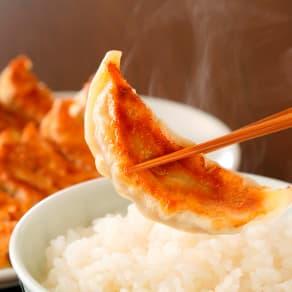 【生産者応援】信念 手づくり餃子(肉・野菜) (各12個入×各2パック) 写真