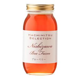 カナダ産ブルーベリーはちみつ (1kg×2本) 濃厚なコクとベリー系特有のフルーティーな甘みのはちみつです。