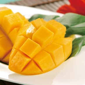 沖縄産 わけありマンゴー (約1.4kg)  写真