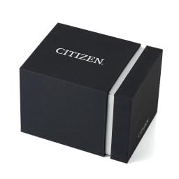 CITIZEN/シチズン ATTESA(アテッサ) ダブルダイレクトフライト エコ・ドライブ電波時計(多極受信型) AT9097-54E BOX入り