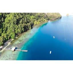 K18 10mmゴールドパール スイング イヤリング・ピアス インドネシアの美しい海