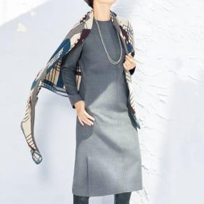 ノバラ社 イタリア素材 シルク起毛仕上げ ワンピース 写真